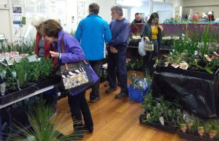 Natural Plantscape's stall