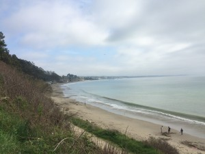 A Walk on the Beaches of Aptos
