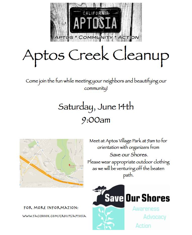 Aptos Creek Cleanup