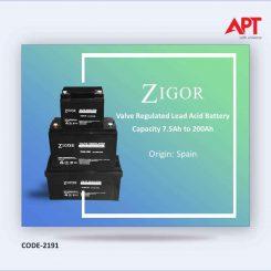 Zigor Maintenance Free Battery