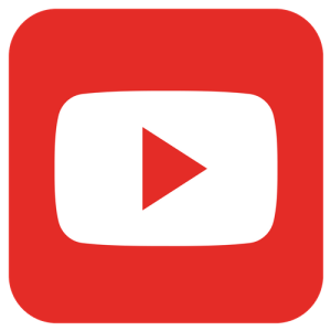 Professional Youtube channel management.