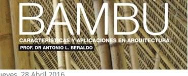 bambu_entrevista