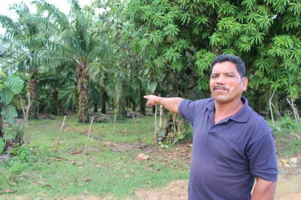 Francisco Ramirez, um pequeno fazendeiro, mostra a rota de fuga para onde seguiu depois de levar um tiro no rosto, durante uma tentativa de ocupar a fazenda El Tumbador, da Dinant