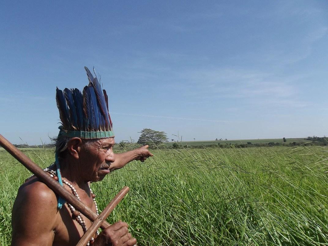 Cacique Tito Vilhalva nasceu e resiste em Guyraroká, terra indígena transformada em fazendas e cuja demarcação foi anulada pelo STF (Tânia Caliari/ Agência Pública)