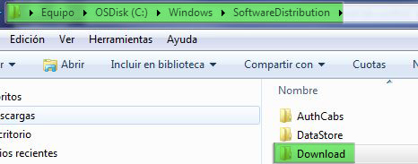 Actualizaciones de windows_softwaredistribution