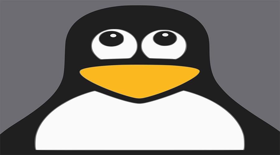 Ejercicios y preguntas teóricas Linux