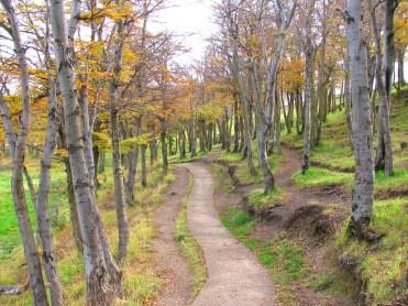 Parque María Behety