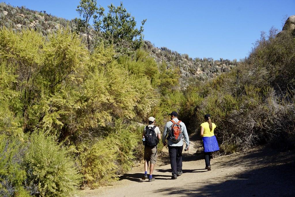 Recorriendo el Valle del Encanto con Ecoturismo La Serena