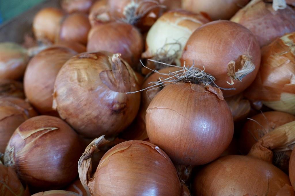 Cebollas, Jaime Astorga