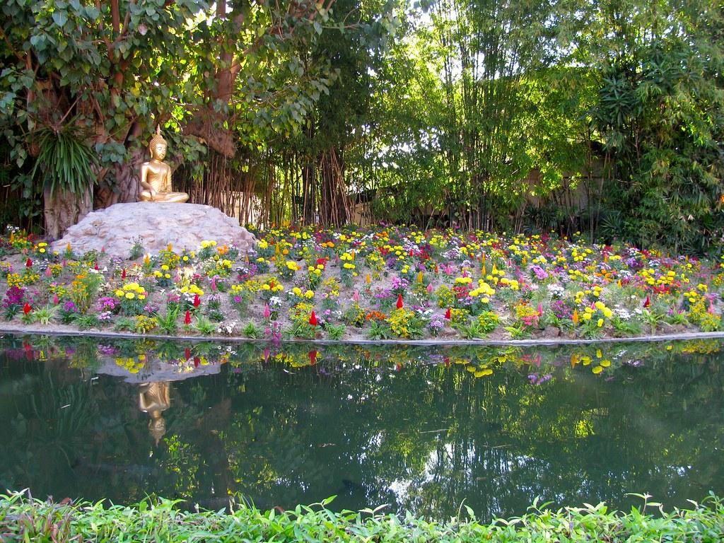 Jardines en Wat Phan Tao