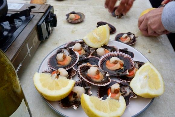 Recién cosechados: Ostiones con limón en la bahía de Tongoy