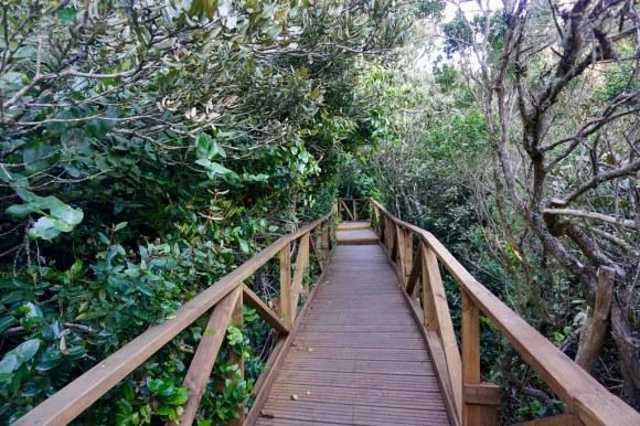 Sendero Parque Fray Jorge