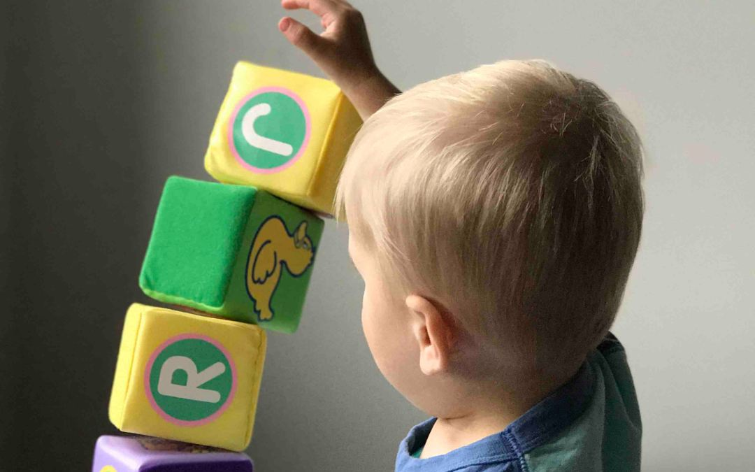 Easy Tips to Keep the Kids Toys Organized