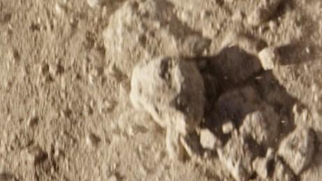 Still from the Oikos Nova spot produced by APZmedia
