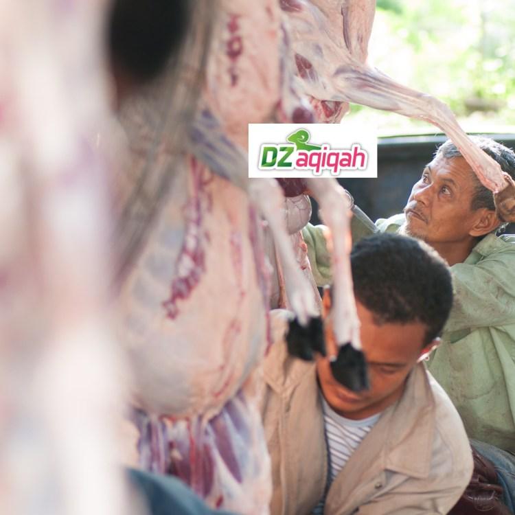 Harga Hewan Qurban 2019 di Purwakarta
