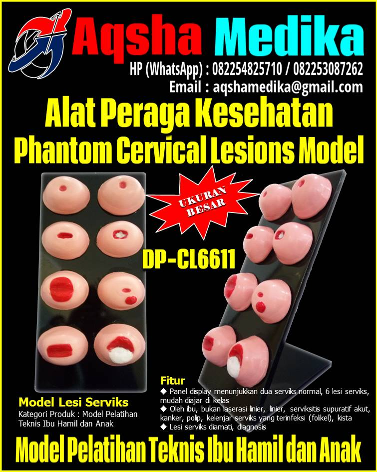 Phantom-Cervical-Lesions-Model-DP-CL6611-Aqsha-Medika-Groups