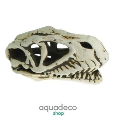 Купить Грот керамический Aqua Nova череп динозавра 14x7x7см в Киеве с доставкой по Украине
