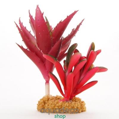 Купить Искусственное растение Yusee Кактус с красными листьями 17x13x16см в Киеве с доставкой по Украине