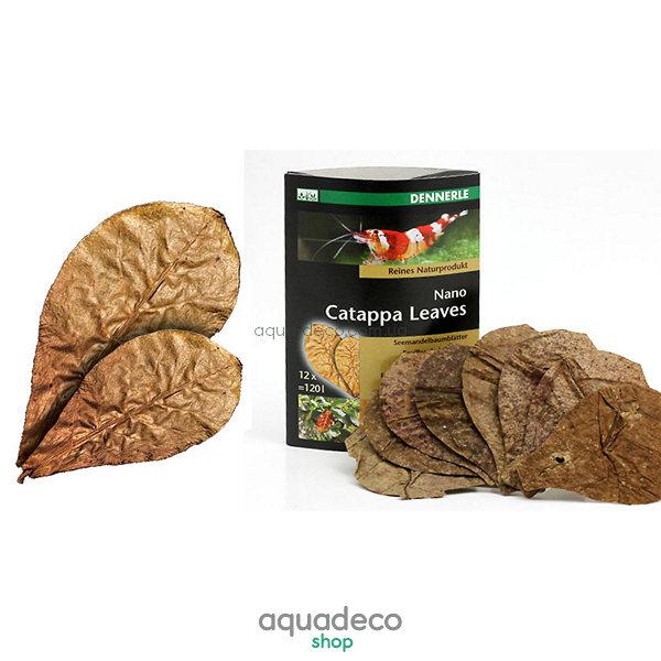 Листья миндального дерева Nano Catappa Leaves, 12 шт.: купить в киеве, цена, фото, обзор, инструкция. Aqua-Deco.com.ua