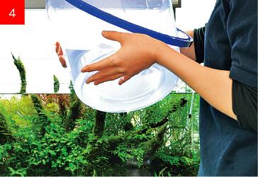 Подмен очищенной воды в аквариум