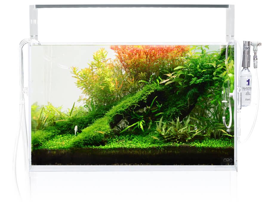 Повторите обрезку, чтобы водные растения стали плотнее.