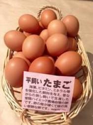 百将屋 平飼いたまご.jpg
