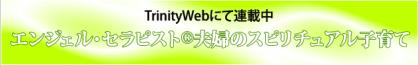 trinityweb_aquamixt.png