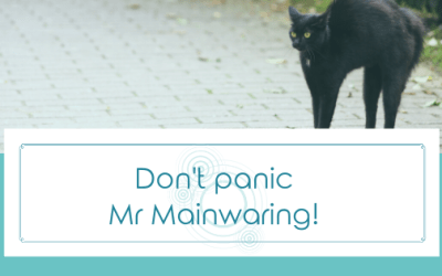 Don't Panic, Mr Mainwaring!