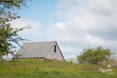 barn roof cloudy summer sky