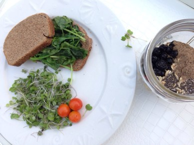 Breakfast with our Microgreens and sautéed cooking greens (Braising mix) and two slices of home made toast. Oats pictured on the side
