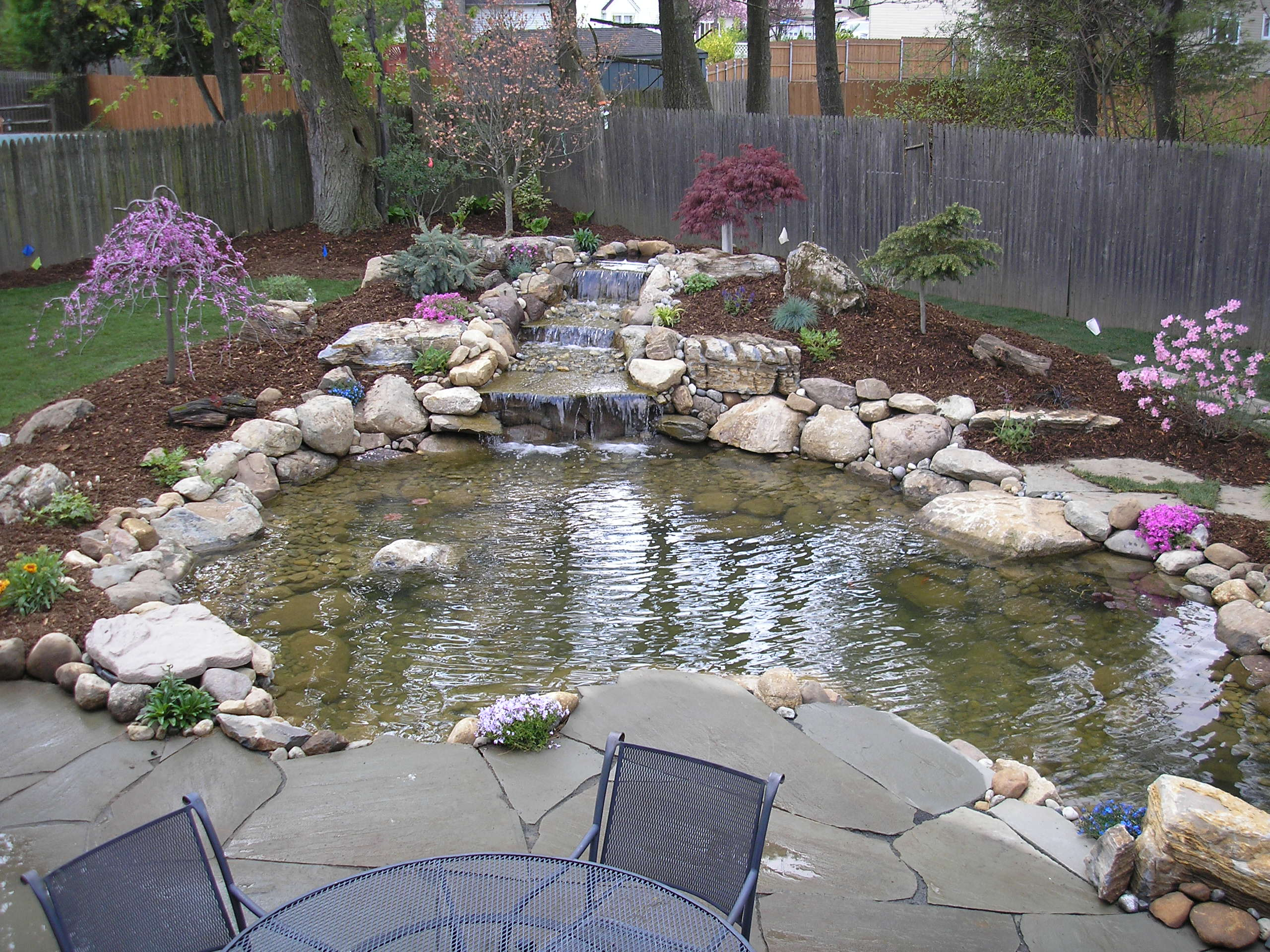 Maintaining Fish Pond