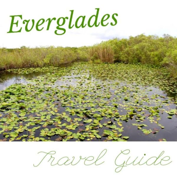Everglades Travel Guide