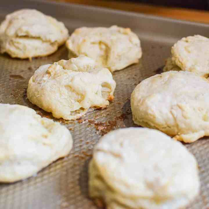 Sourdough Biscuits on a cookie sheet