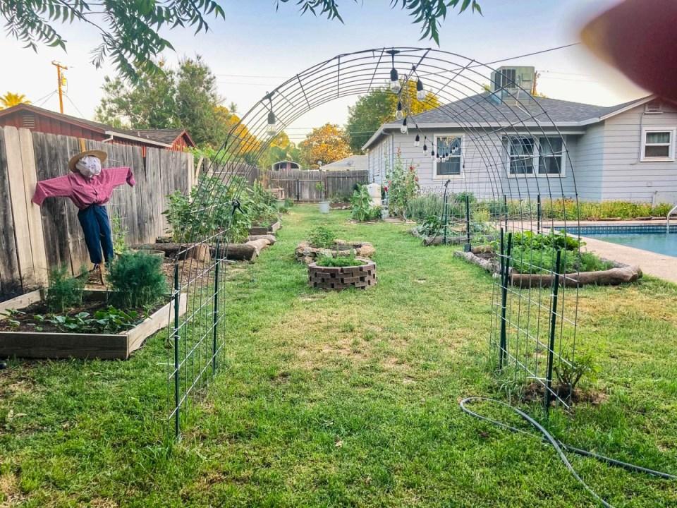trellis in a garden for garden inspiration