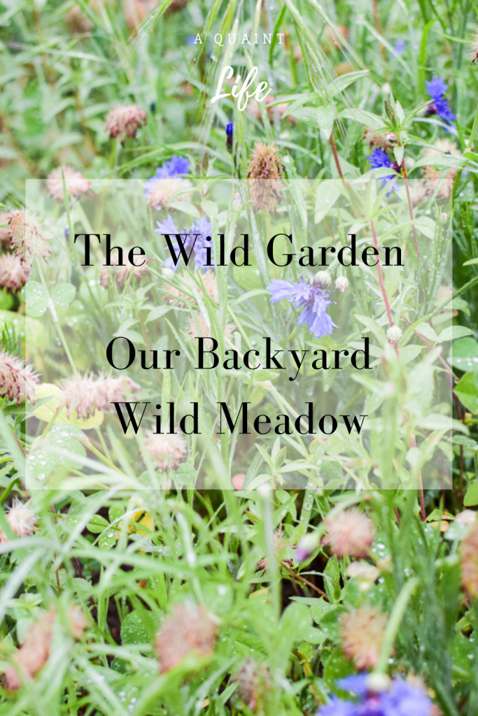 The Wild Garden Pin with a backyard meadow pictured