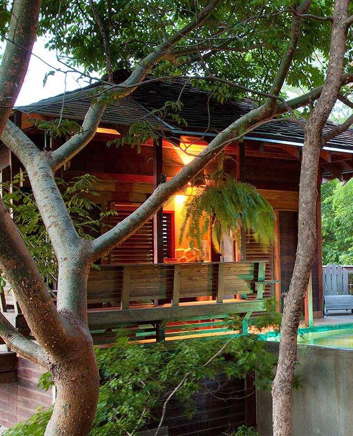 luxurious tree house mystical luxury tree house studios villas aqua wellness resort