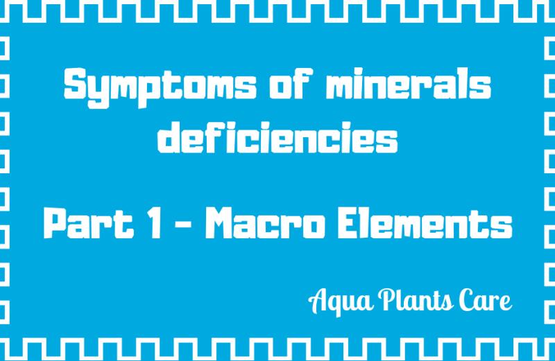 Symptoms of minerals deficiencies in planted aquarium Macro