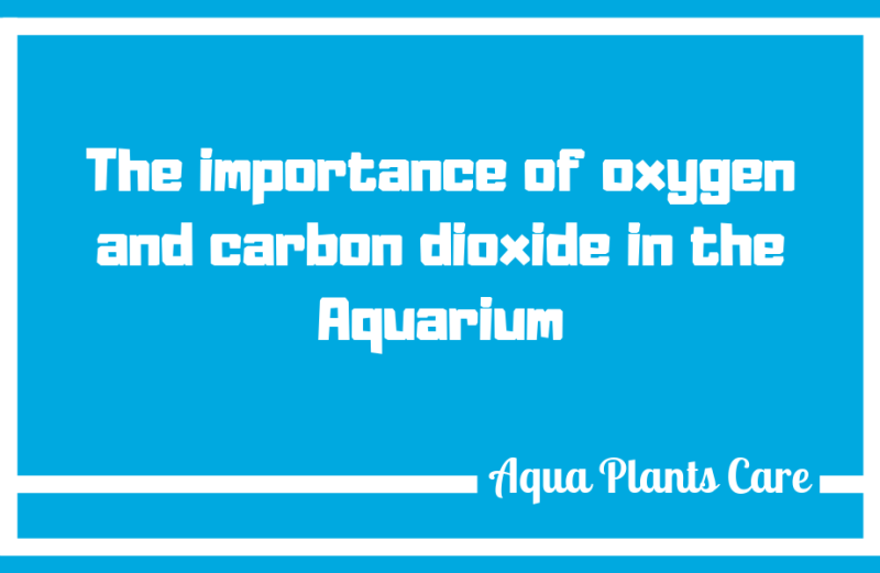 The most recommended dose of carbon dioxide is 20-35mg/liter and this must be maintained to ensure plant growth. Aqua Plants Care