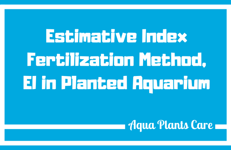 Estimative Index Fertilization Method, EI in Planted Aquarium