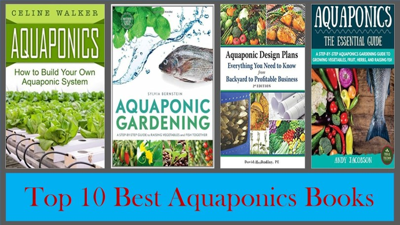 10 Best Aquaponics Books :You Should Read – Aquaponics ... Aquaponic Garden Designs on pond garden designs, diy garden designs, indoor aquaponics system designs, indoor garden designs, best aquaponic designs, backyard garden designs, berry garden designs, aeroponic garden designs, hydroponic garden designs, aquaculture garden designs, green garden designs, aquaponic diy designs, art garden designs, organic garden designs, greenhouse designs, for backyard aquaponic designs,