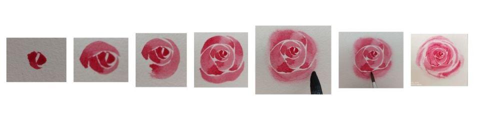 Etapes pour peindre une rose à l'aquarelle sans croquis (technique d'aquarelle moderne)