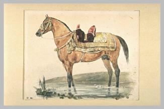 Théodore Gericault (1791-1824), Cheval arabe vue de profil vers la gauche, 18x23cm, aquarelle, 1er quart du XIXe siècle, muée du Louvre, Paris, Disponible sur la base Joconde http://www.culture.gouv.fr/public/mistral/joconde_fr?ACTION=RETROUVER&FIELD_2=AUTR&VALUE_2=GERICAULT%20THEODORE&NUMBER=77&GRP=0&REQ=%28%28GERICAULT%20THEODORE%29%20%3aAUTR%20%29&USRNAME=nobody&USRPWD=4%24%2534P&SPEC=5&SYN=1&IMLY=&MAX1=1&MAX2=1&MAX3=100&DOM=All (Consulté le 27/03/13)