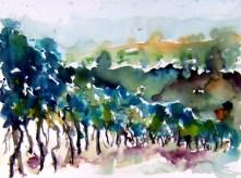 aquarell, Landschaft, weinberge, retz, blauer portugieser