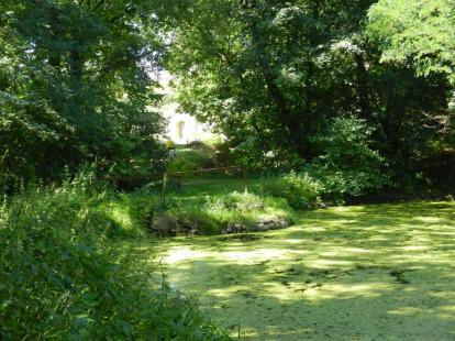 teich, pond, brücke, bridge, landschaft, landscape, weinviertel, mitterretzbach