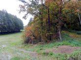 pleissing, retzerland, plomenade, weg, promenadenweg, path, bäume, trees, herbst, fall, autumn