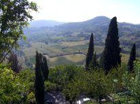 toskana, tuscany, zypresse, cypress, licht, light
