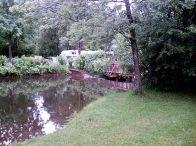 teich, pond, amerang, baum, tree, lila, schilf, Bauernhausmuseum