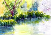 aquarell, watercolor, aquarelle, teich, pond, étang, lilien, schwertlilien, lily, lilies lis, iris, yellow, flag, flambes,