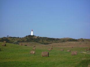 insel, island, isle, île, hiddensee, rügen, ostsee, baltic, baltique,