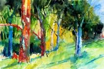 aquarell, watercolor, aquarelle, acquerello, rot, red, rouge, rosso, föhre, pine, pin, pino silvestre, wald, forest, bois, bosco, foresta, selva, bäume, trees, arbres, albero, árbol,